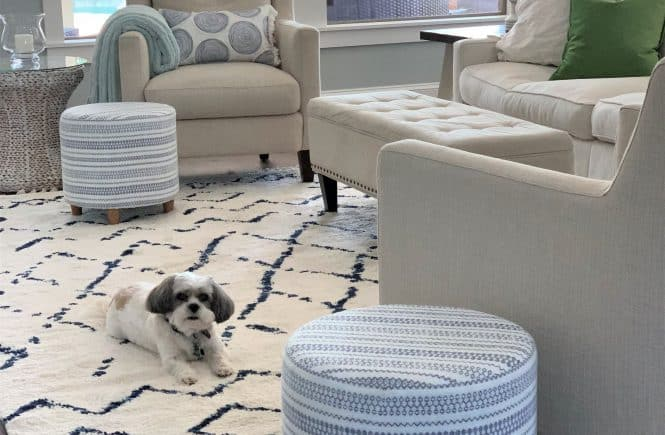 Brilliant 12 Best Navy And White Area Rugs Under 200 Ocoug Best Dining Table And Chair Ideas Images Ocougorg